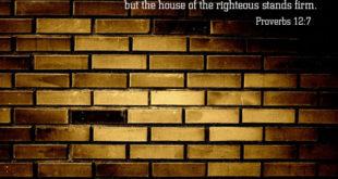 proverbs12_7
